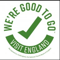 21-03-07 good to go logo.jpg